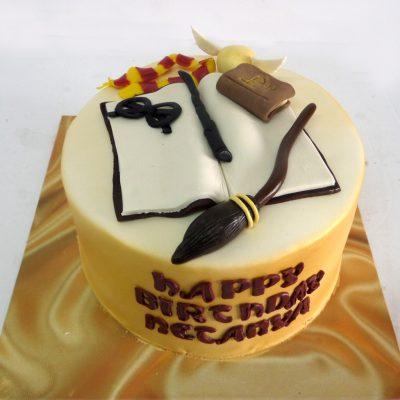 Harry Potter Cake 1